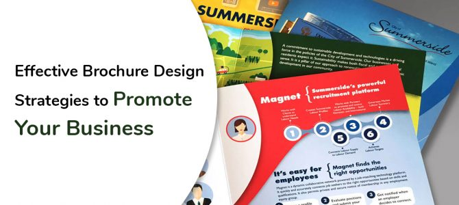 Effective Brochure Design Strategies to Promote Your Business